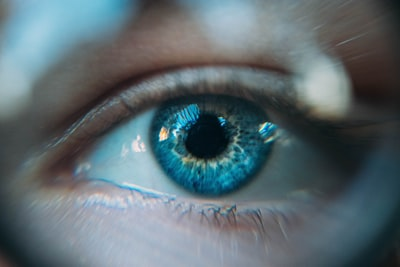 When Your Eyes Are On, Your Eyes Aren't What You Think they Are: The New Science of Your Brain